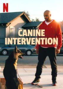 Canine Intervention English subtitles
