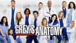 greys anatomy season 17 English subtitles